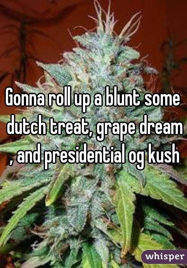 Gonna roll up a blunt some dutch treat, grape dream , and presidential og kush
