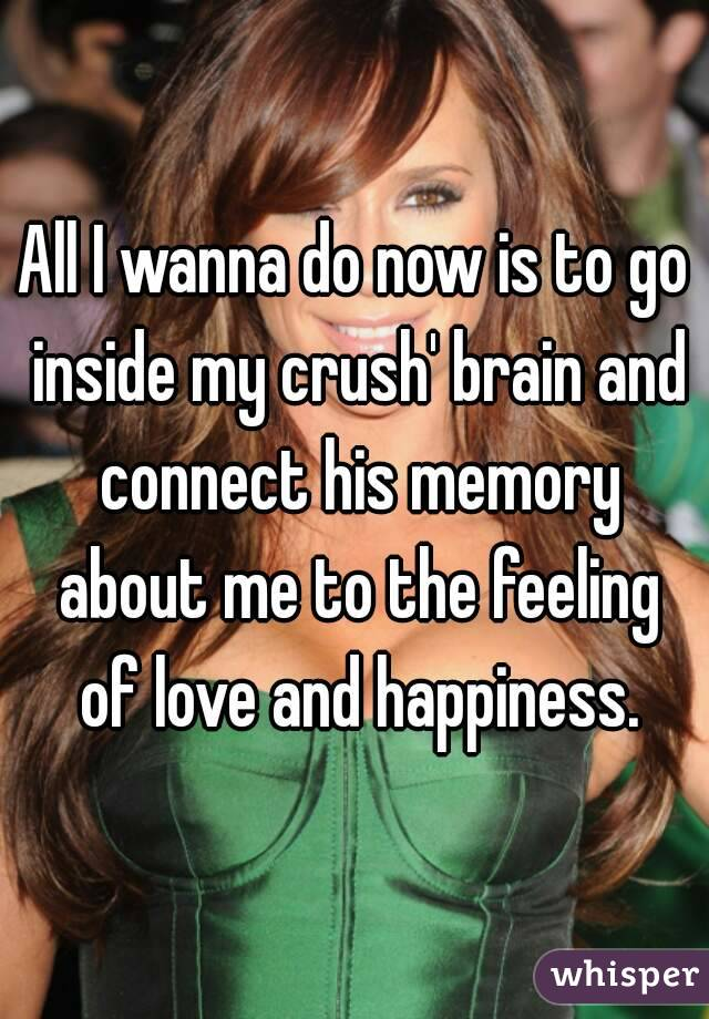 All I wanna do now is to go inside my crush' brain and connect his memory about me to the feeling of love and happiness.