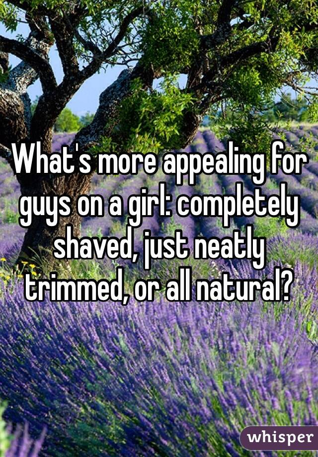 What's more appealing for guys on a girl: completely shaved, just neatly trimmed, or all natural?