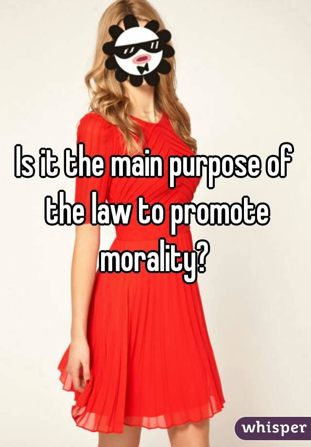 Is it the main purpose of the law to promote morality?