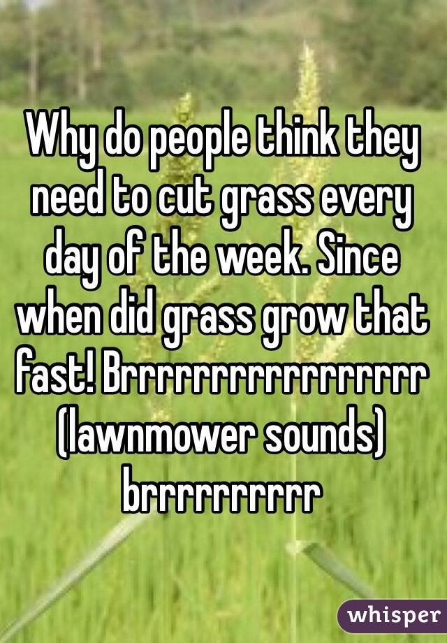 Why do people think they need to cut grass every day of the week. Since when did grass grow that fast! Brrrrrrrrrrrrrrrrr (lawnmower sounds) brrrrrrrrrr