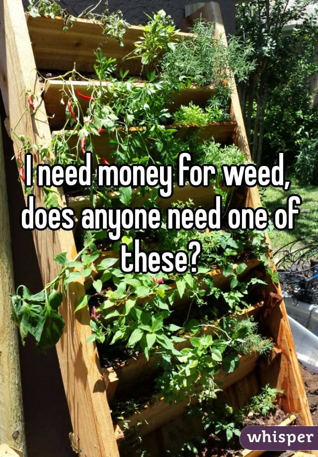I need money for weed, does anyone need one of these?
