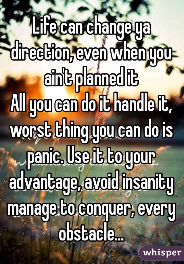 Life can change ya direction, even when you ain't planned it All you can do it handle it, worst thing you can do is panic. Use it to your advantage, avoid insanity manage to conquer, every obstacle...