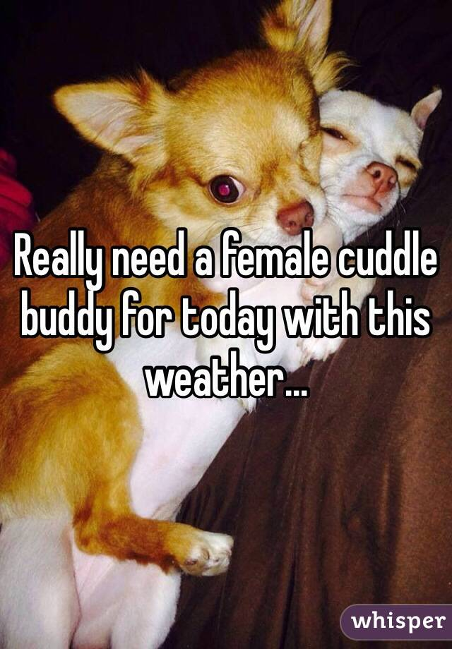Really need a female cuddle buddy for today with this weather...