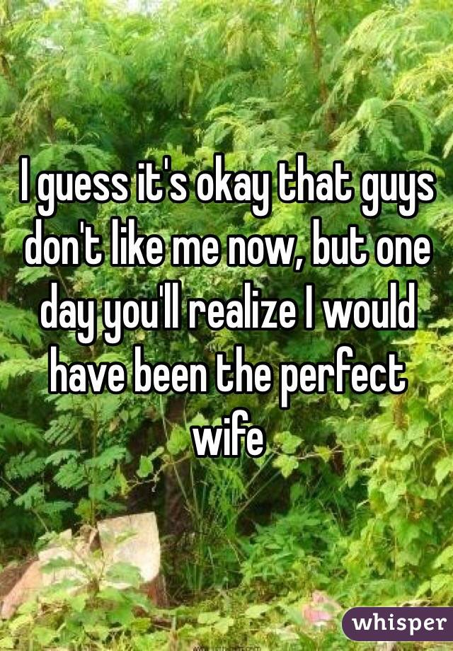 I guess it's okay that guys don't like me now, but one day you'll realize I would have been the perfect wife