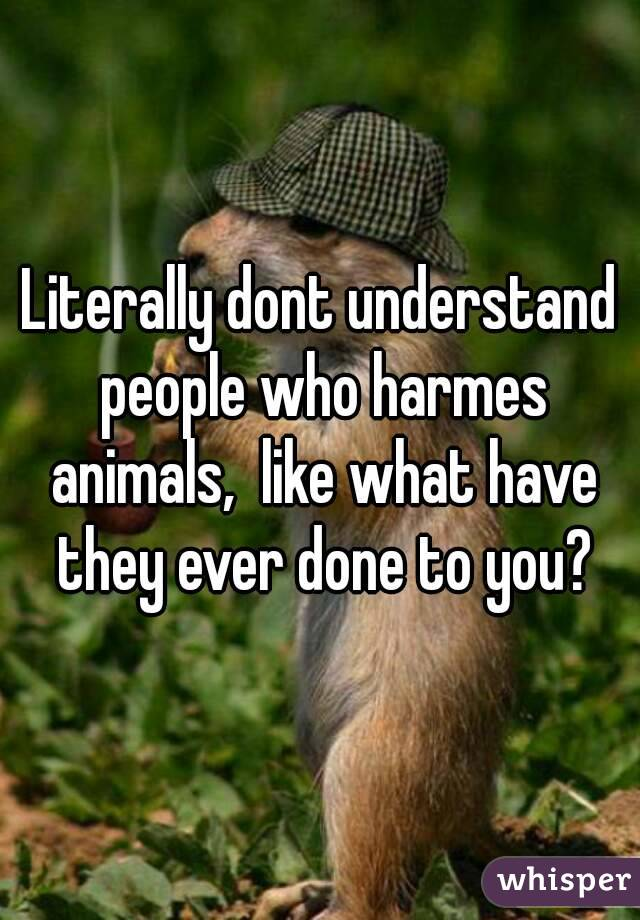 Literally dont understand people who harmes animals,  like what have they ever done to you?