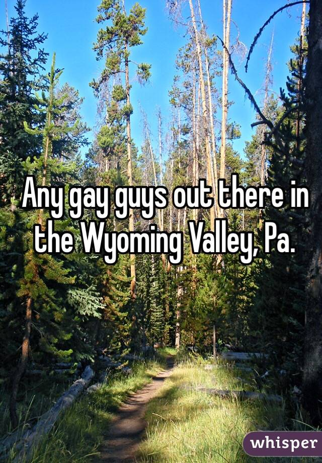 Any gay guys out there in the Wyoming Valley, Pa.