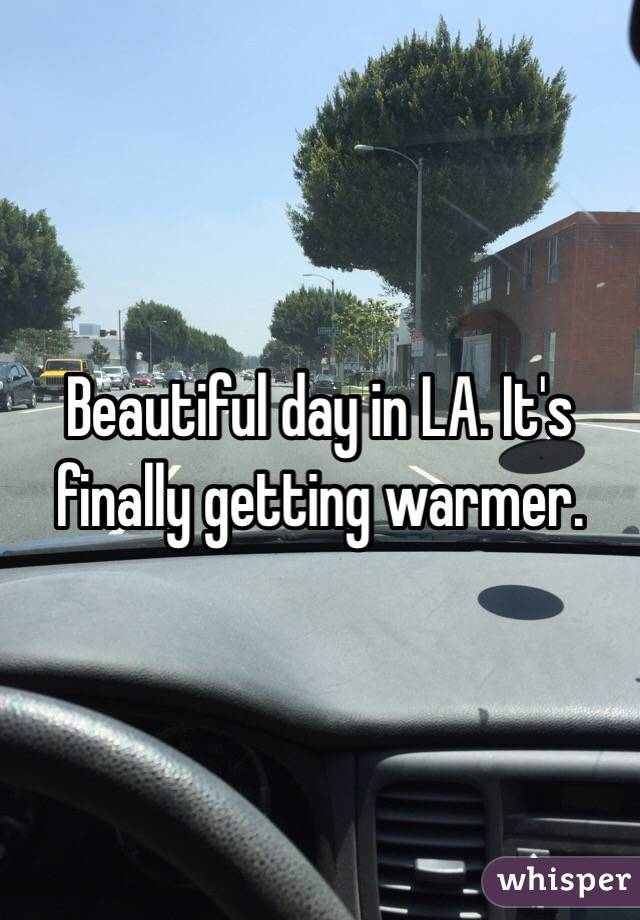 Beautiful day in LA. It's finally getting warmer.