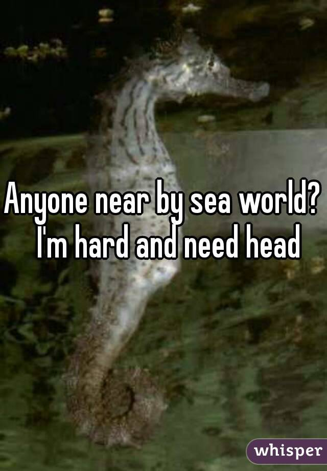 Anyone near by sea world?  I'm hard and need head