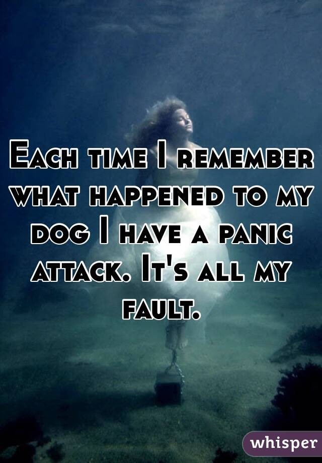 Each time I remember what happened to my dog I have a panic attack. It's all my fault.
