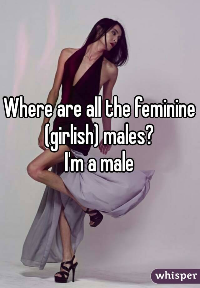 Where are all the feminine (girlish) males?  I'm a male