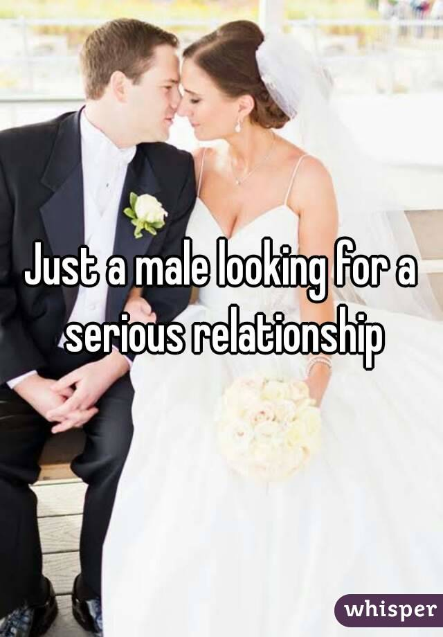 Just a male looking for a serious relationship