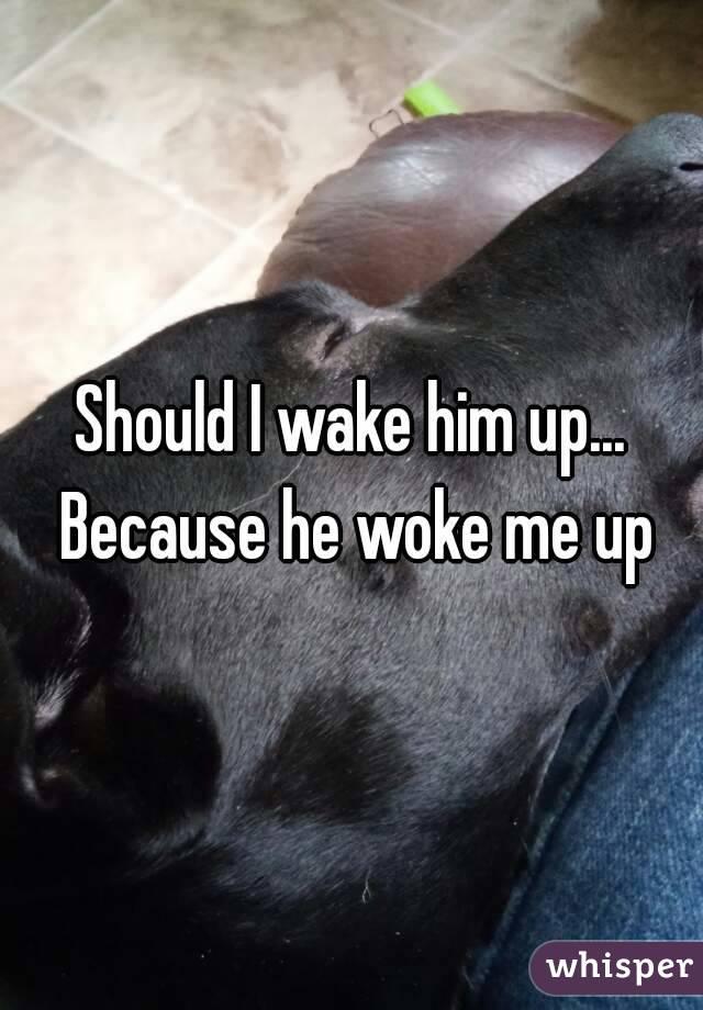 Should I wake him up... Because he woke me up
