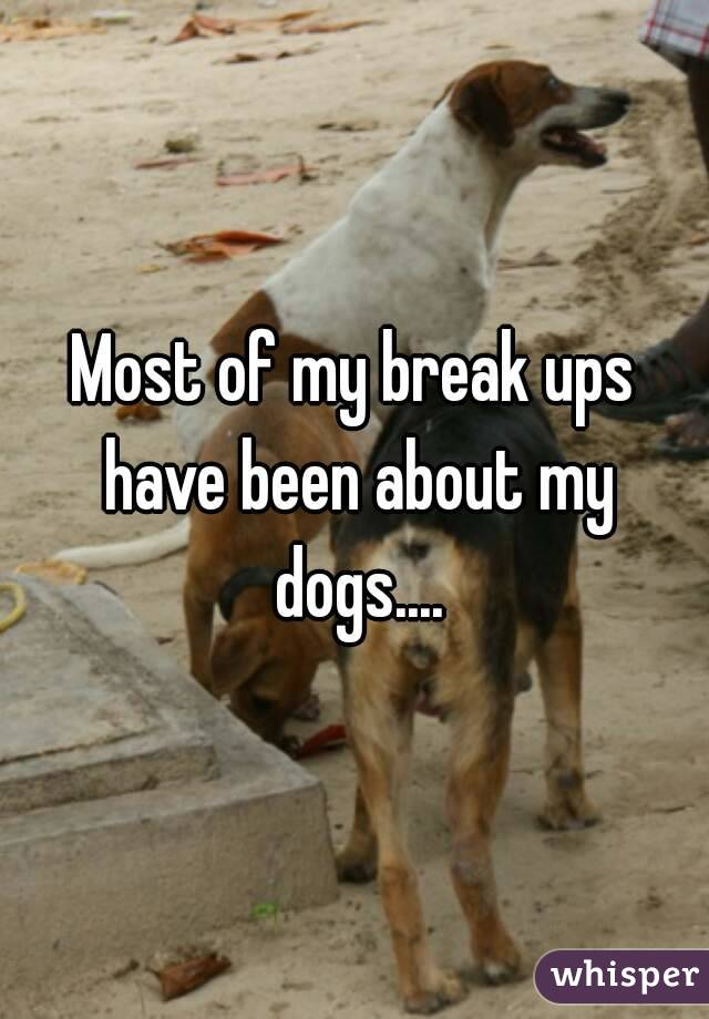 Most of my break ups have been about my dogs....