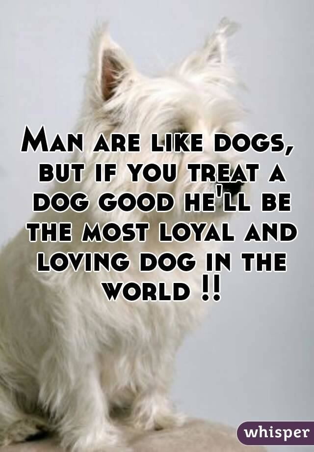 Man are like dogs, but if you treat a dog good he'll be the most loyal and loving dog in the world !!