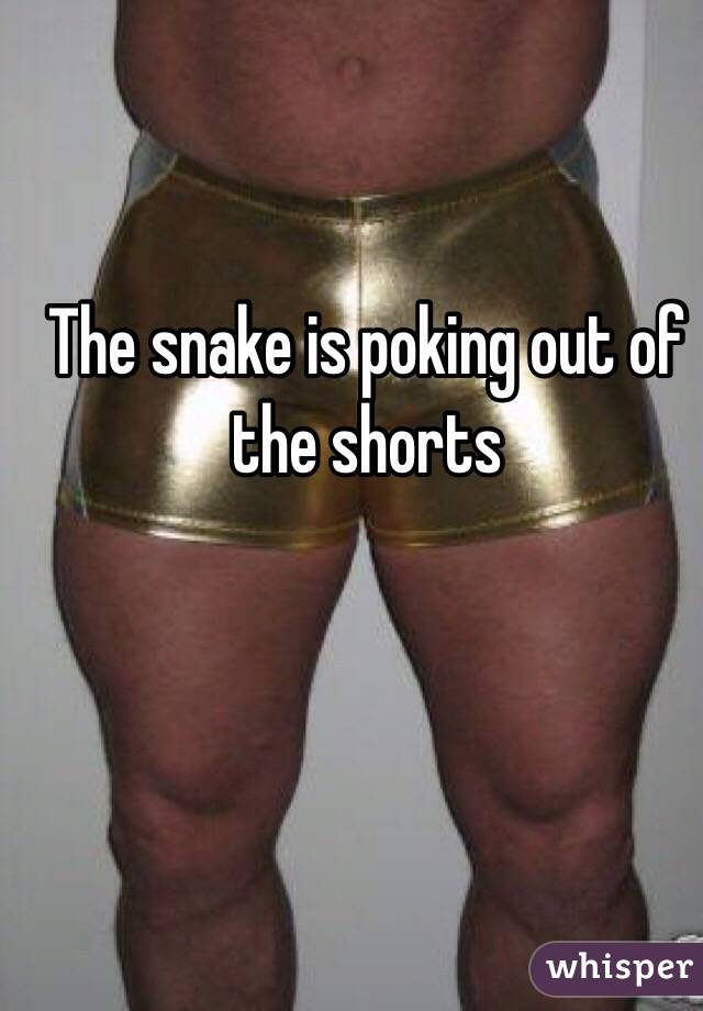 The snake is poking out of the shorts