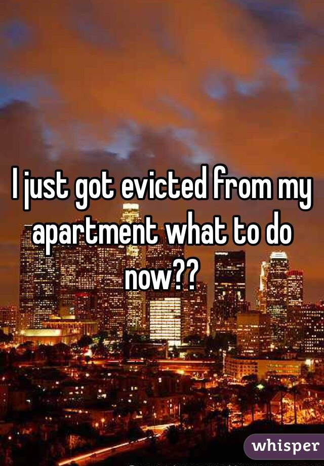 I just got evicted from my apartment what to do now??
