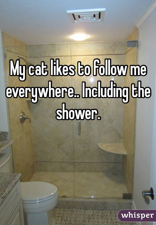 My cat likes to follow me everywhere.. Including the shower.