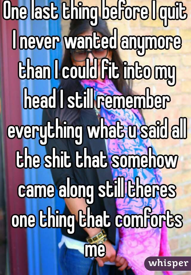 One last thing before I quit I never wanted anymore than I could fit into my head I still remember everything what u said all the shit that somehow came along still theres one thing that comforts me