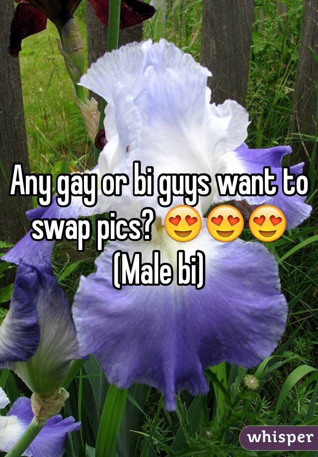 Any gay or bi guys want to swap pics? 😍😍😍 (Male bi)