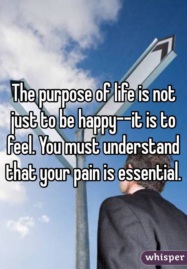 The purpose of life is not just to be happy--it is to feel. You must understand that your pain is essential.