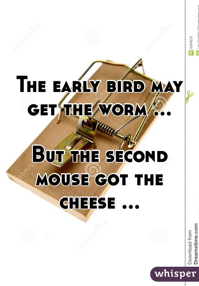 The early bird may get the worm ...  But the second mouse got the cheese ...
