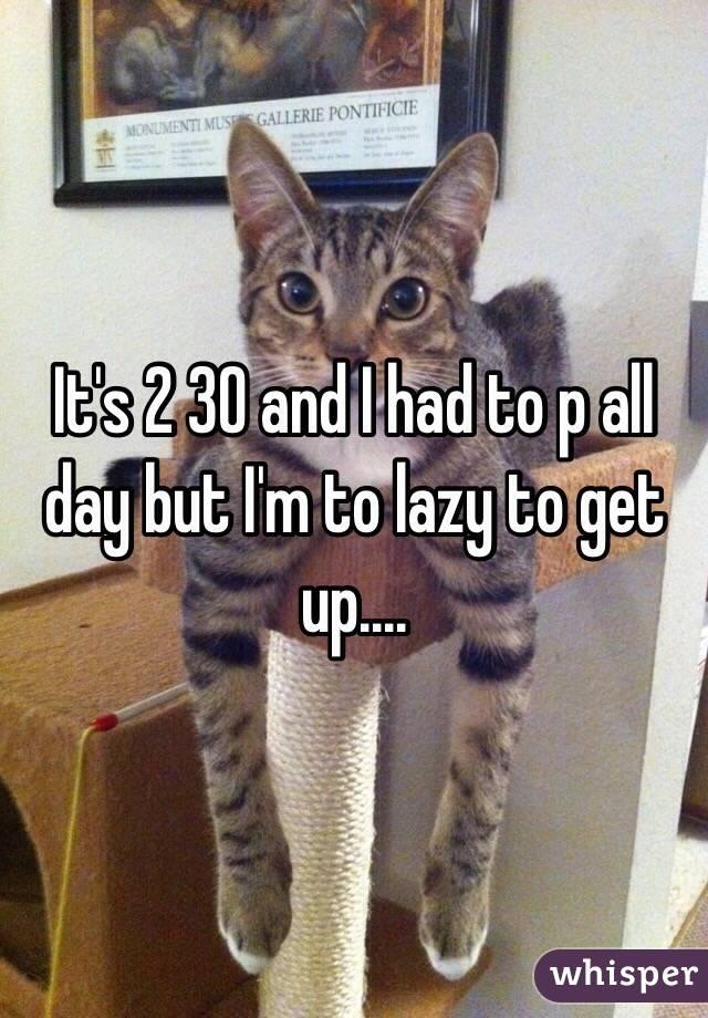 It's 2 30 and I had to p all day but I'm to lazy to get up....