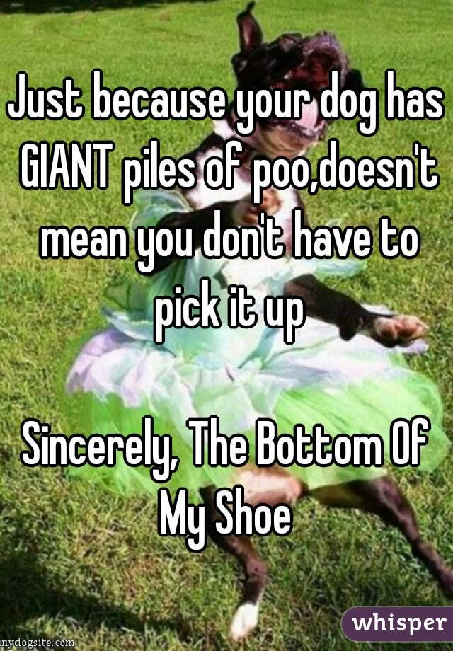 Just because your dog has GIANT piles of poo,doesn't mean you don't have to pick it up  Sincerely, The Bottom Of My Shoe