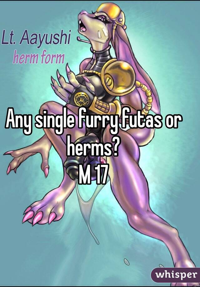 Any single furry futas or herms? M 17