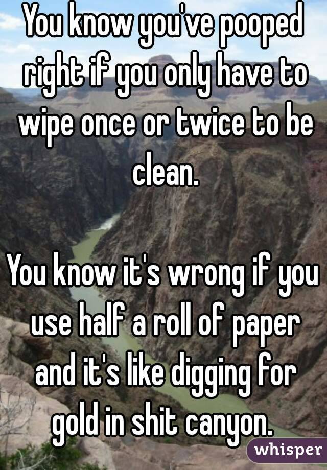 You know you've pooped right if you only have to wipe once or twice to be clean.  You know it's wrong if you use half a roll of paper and it's like digging for gold in shit canyon.