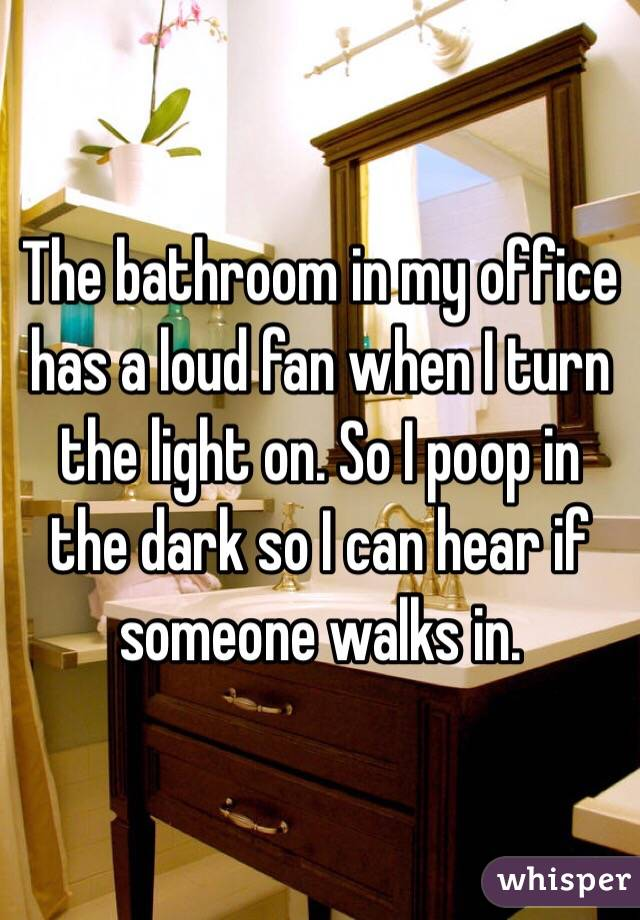 The bathroom in my office has a loud fan when I turn the light on. So I poop in the dark so I can hear if someone walks in.