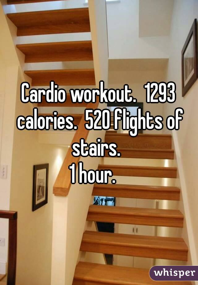 Cardio workout.  1293 calories.  520 flights of stairs.   1 hour.