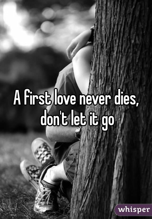 A first love never dies, don't let it go