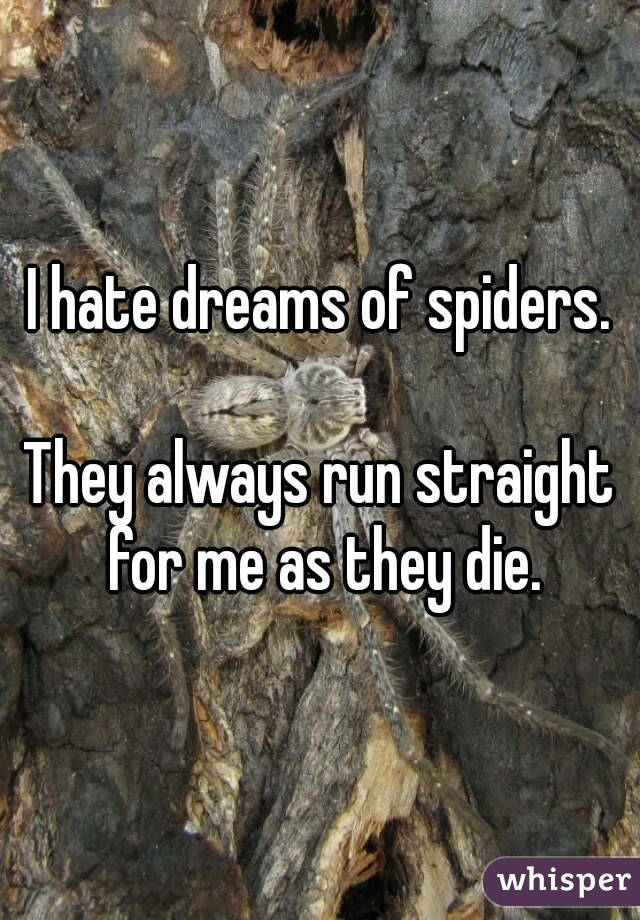 I hate dreams of spiders.  They always run straight for me as they die.