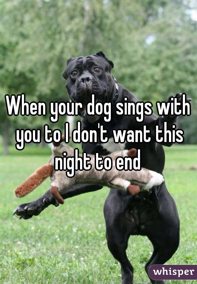 When your dog sings with you to I don't want this night to end
