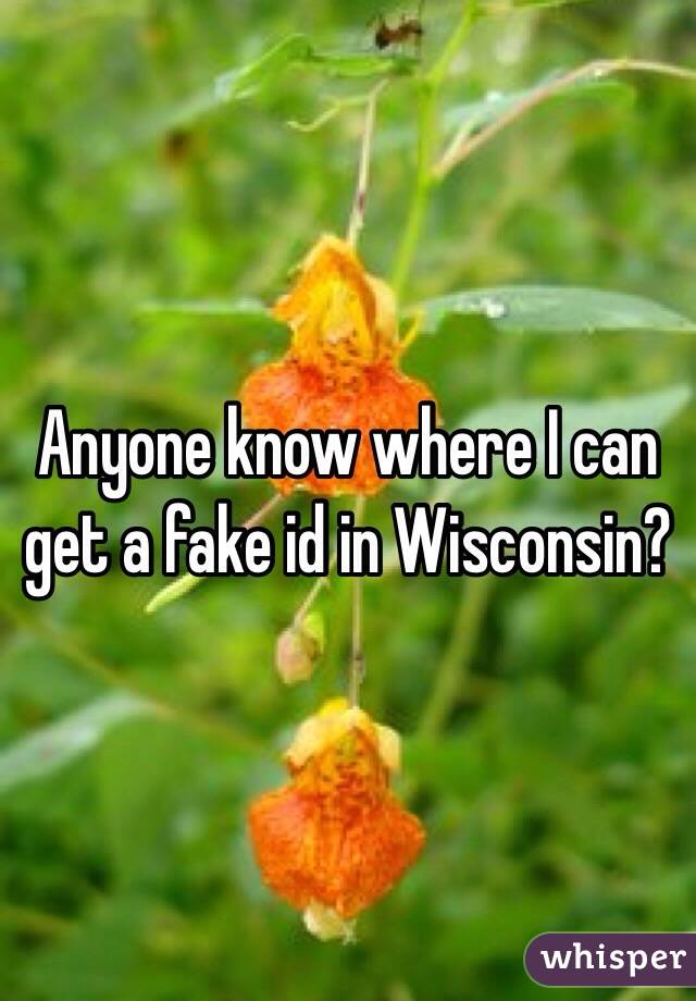 Anyone know where I can get a fake id in Wisconsin?