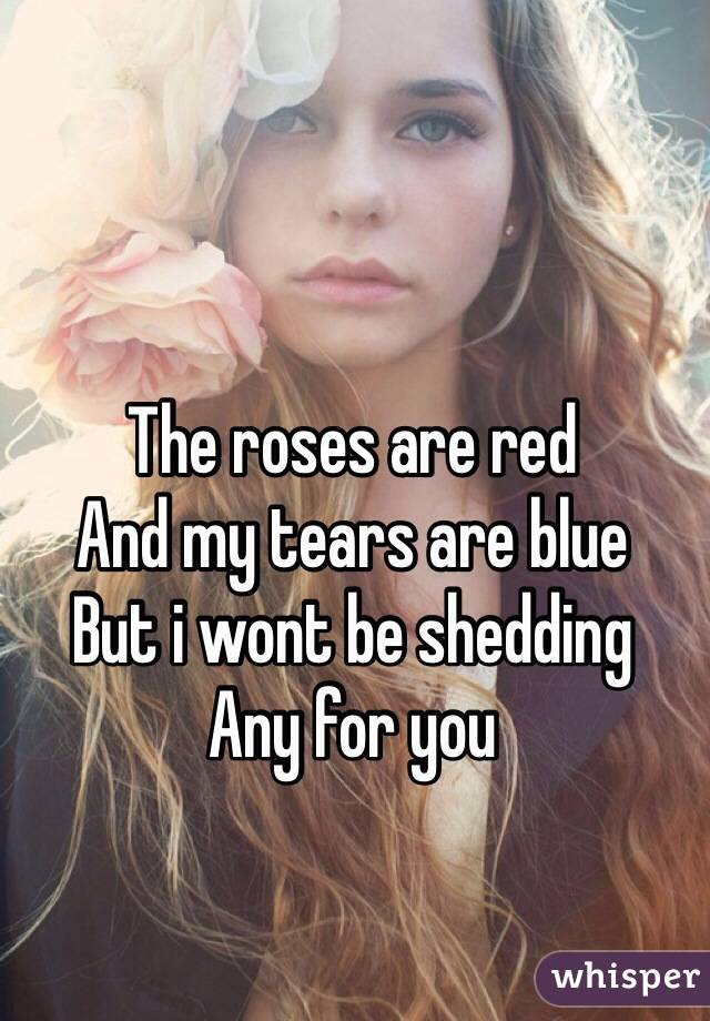 The roses are red And my tears are blue But i wont be shedding Any for you