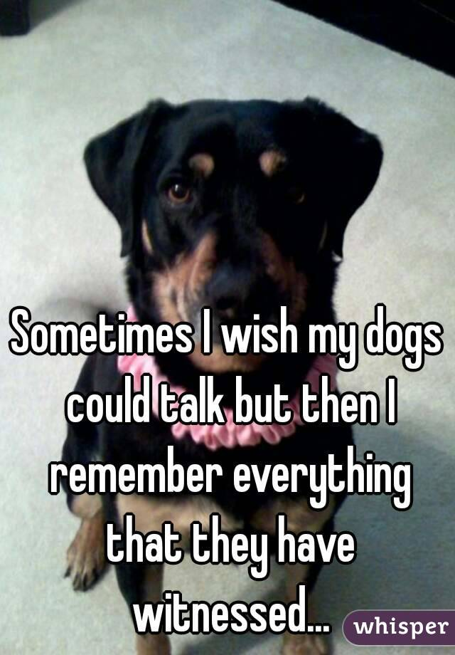 Sometimes I wish my dogs could talk but then I remember everything that they have witnessed...