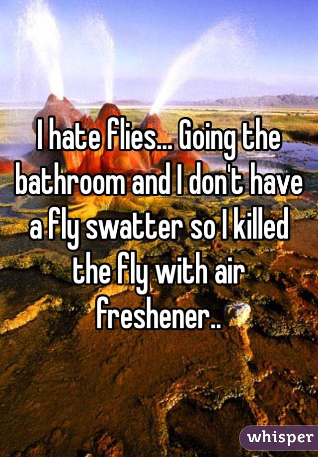 I hate flies... Going the bathroom and I don't have a fly swatter so I killed the fly with air freshener..