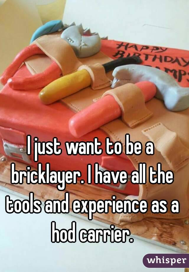 I just want to be a bricklayer. I have all the tools and experience as a hod carrier.