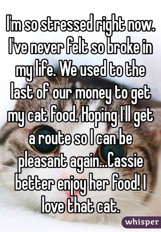I'm so stressed right now. I've never felt so broke in my life. We used to the last of our money to get my cat food. Hoping I'll get a route so I can be pleasant again...Cassie better enjoy her food! I love that cat.