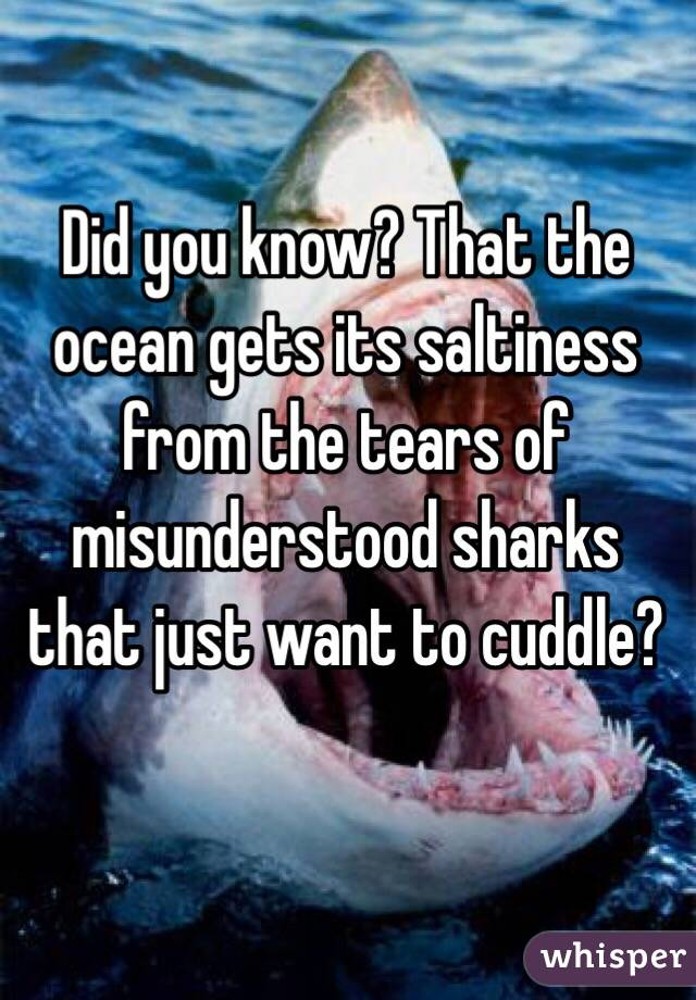 Did you know? That the ocean gets its saltiness from the tears of misunderstood sharks that just want to cuddle?