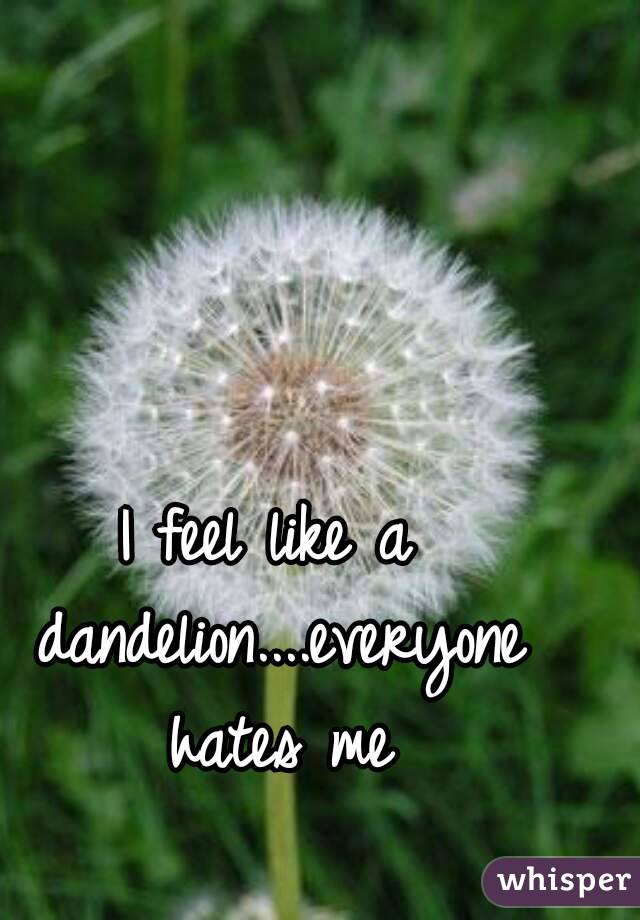 I feel like a dandelion....everyone hates me