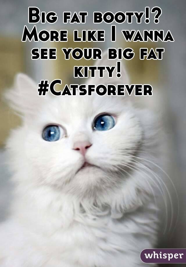 Big fat booty!? More like I wanna see your big fat kitty! #Catsforever