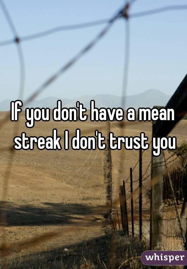 If you don't have a mean streak I don't trust you