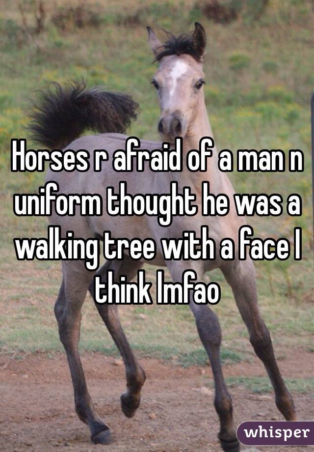 Horses r afraid of a man n uniform thought he was a walking tree with a face I think lmfao