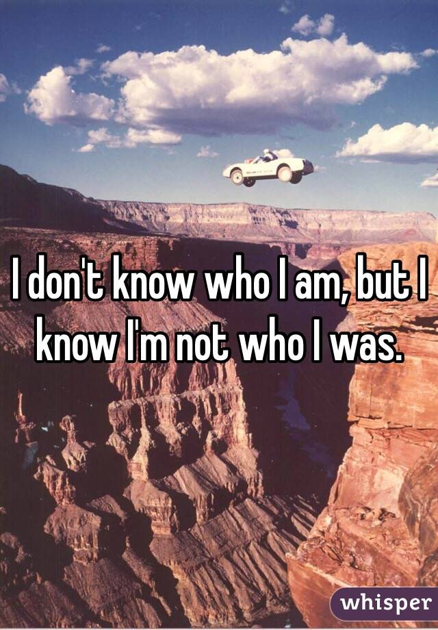 I Dont Know Who I Am But I Know Im Not Who I Was