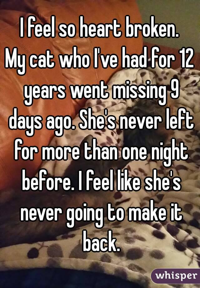 I feel so heart broken. My cat who I've had for 12 years went missing 9 days ago. She's never left for more than one night before. I feel like she's never going to make it back.
