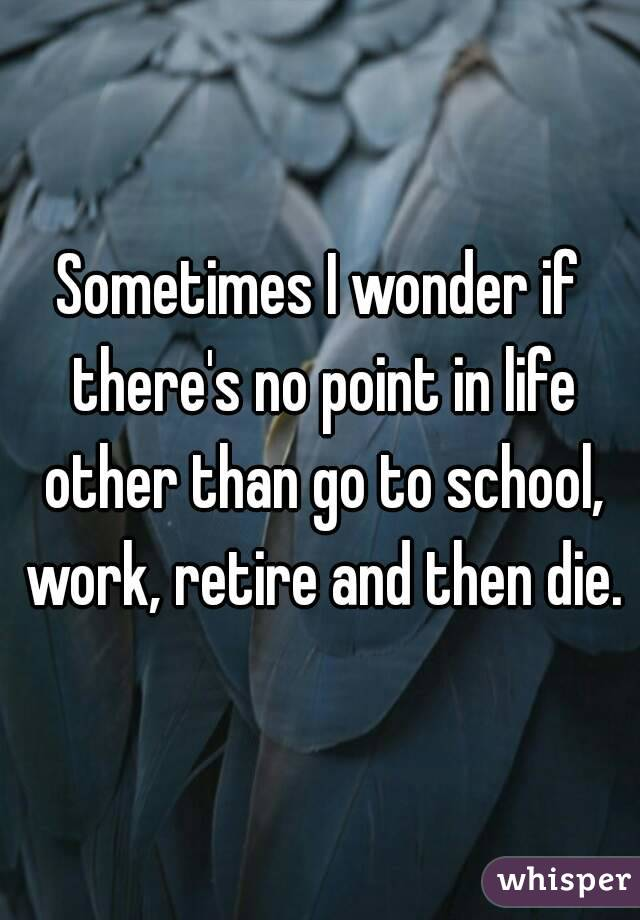 Sometimes I wonder if there's no point in life other than go to school, work, retire and then die.