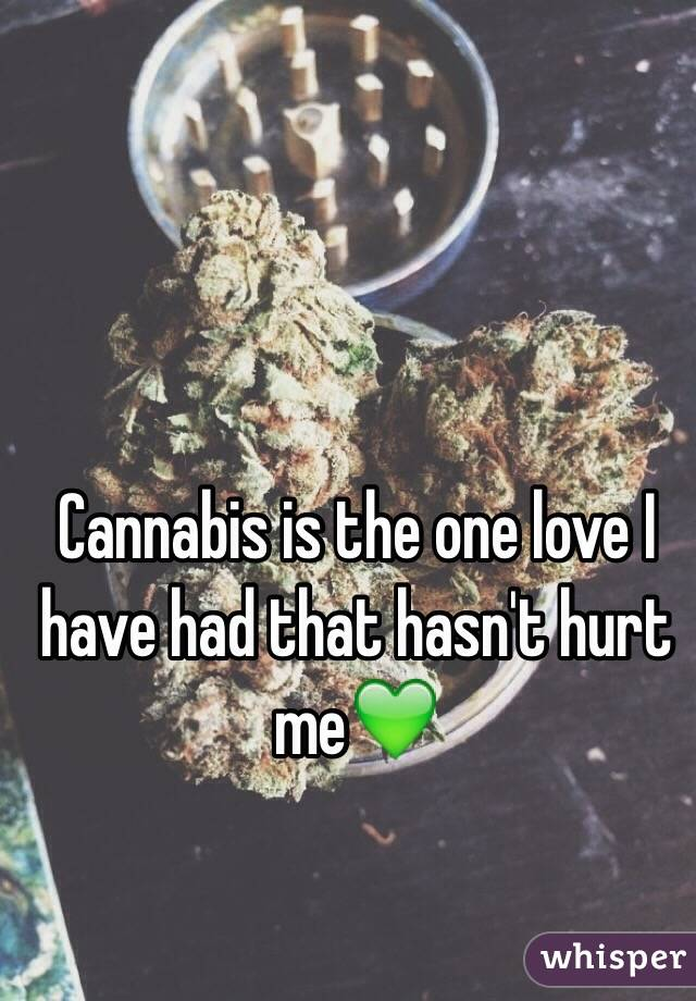 Cannabis is the one love I have had that hasn't hurt me💚